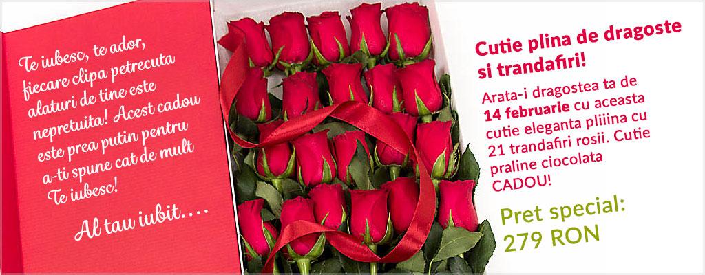 Oferte speciale de Sfantul Valentin