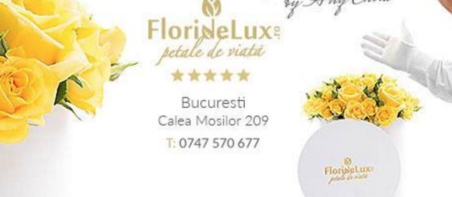 Floraria FlorideLux Mosilor 209