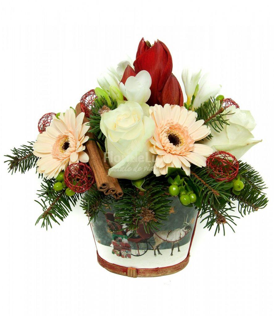 Ce flori se ofera iarna