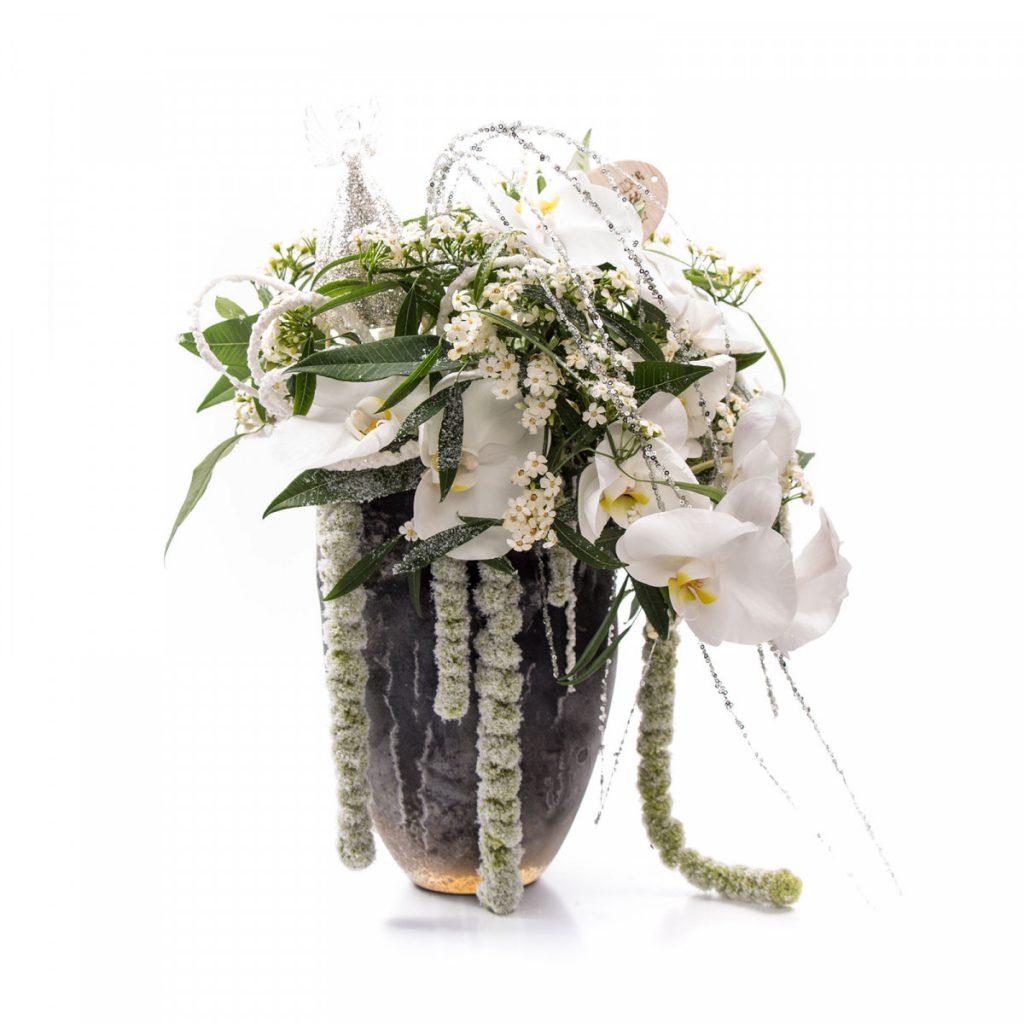 Ingerul pazitor al Craciunului, flori albe minunate, care prevestesc venirea sarbatorilor de iarna. Un adevarat cadou floral !
