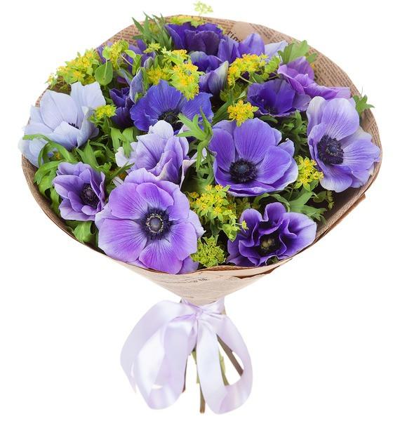 Flori Sfantul Andrei, doar 229.99 RON!
