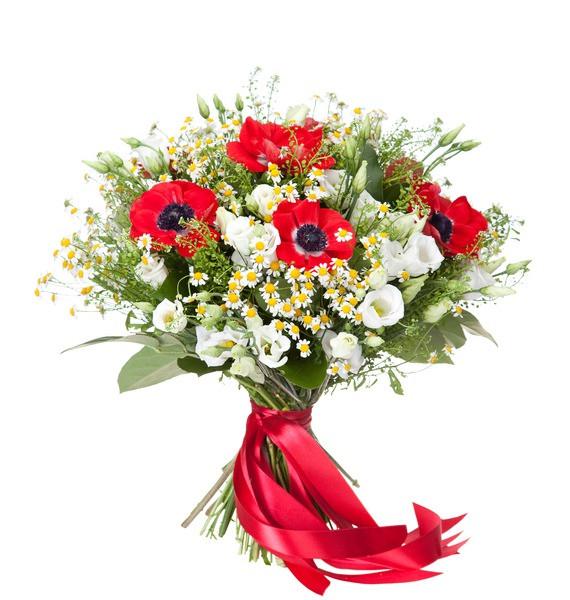 Sfantul Andrei flori minunate, doar 328.99 RON!