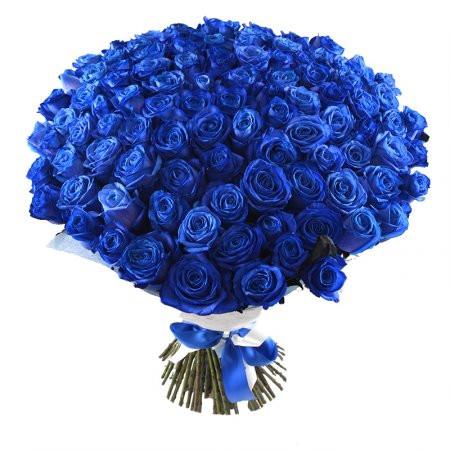 101 trandafiri albaștri, doar 1458,99 RON!