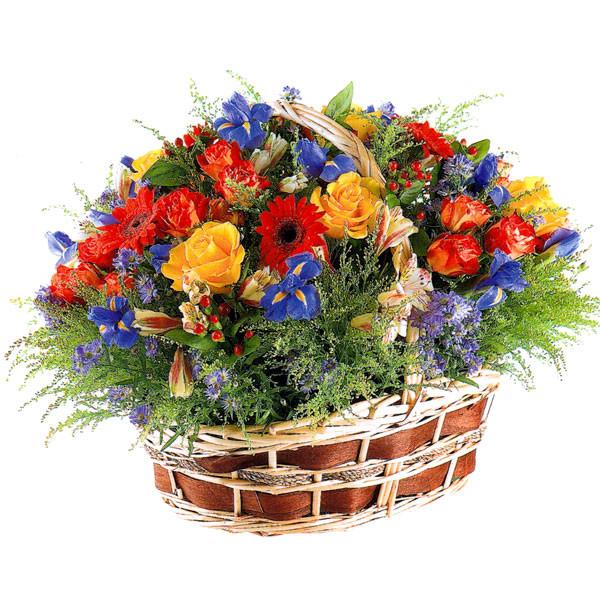 Cos flori trandafiri, gerbera si iris