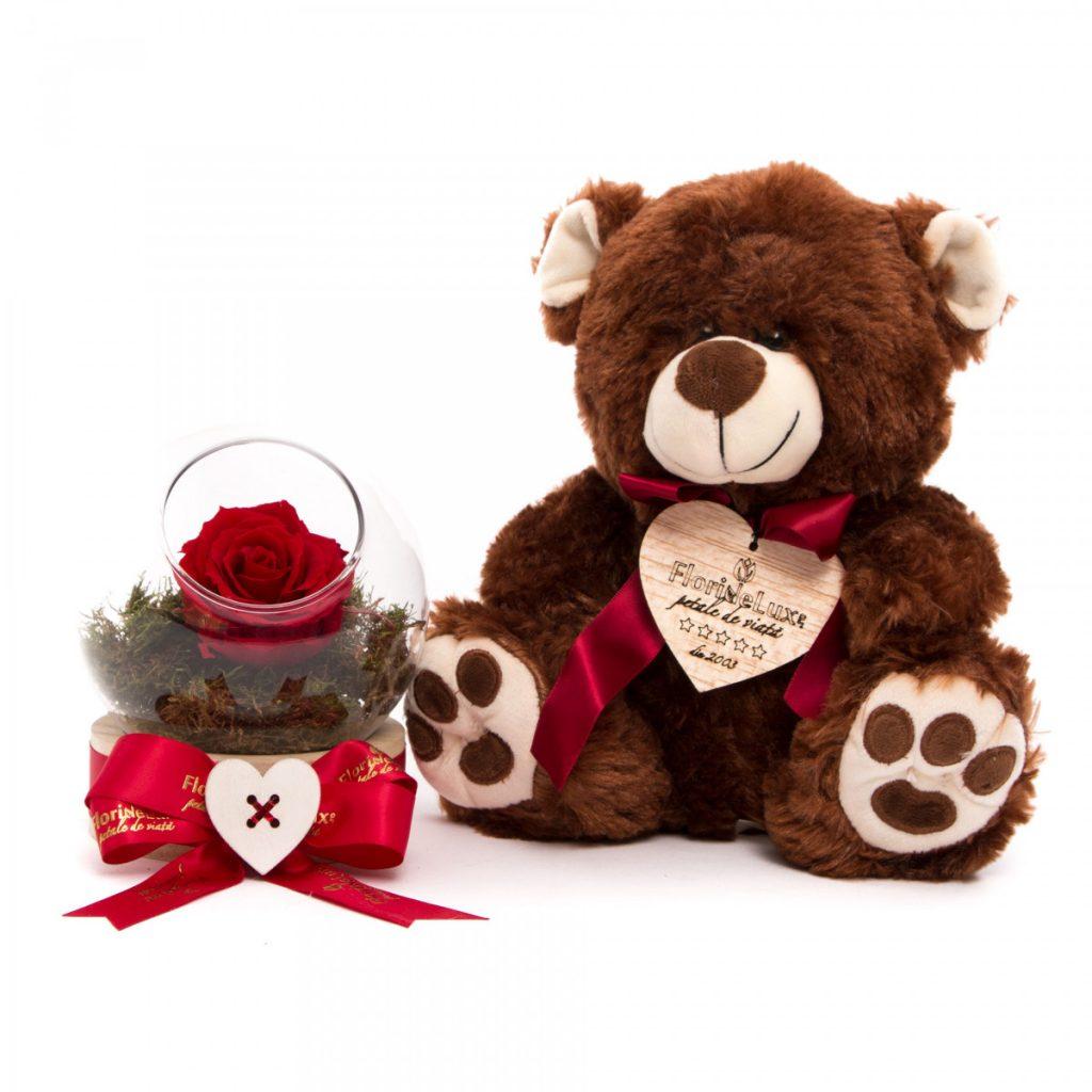 Ghid supraviețuire Ziua Îndrăgostiților pentru bărbați, Un pic de iubire și ursuleț de pluș, doar 199,99 RON!