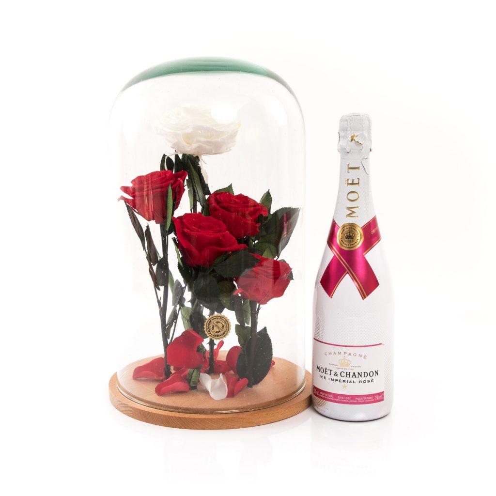 Trandafiri criogenați Garden of Eden și șampanie Ice Moet, doar 1159,99 RON!