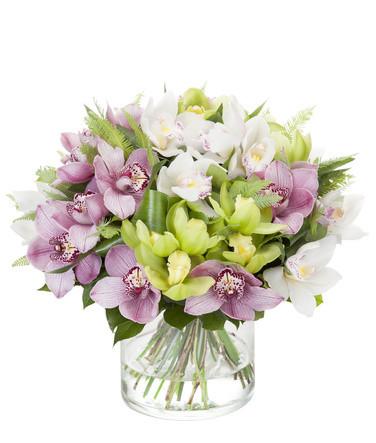 Flori pentru zodii, Buchet orhidee colorata