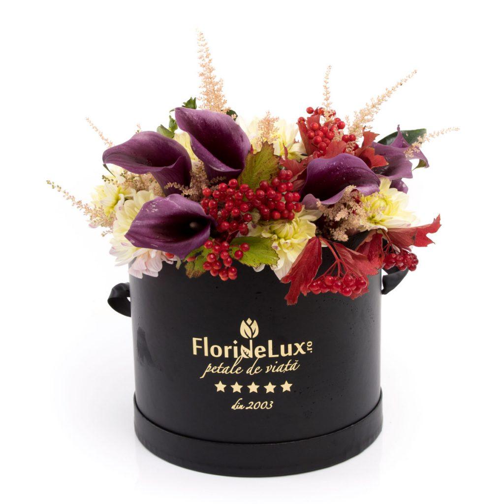 Florărie Botosani, Cutie cu flori Elements, doar 339,99 RON