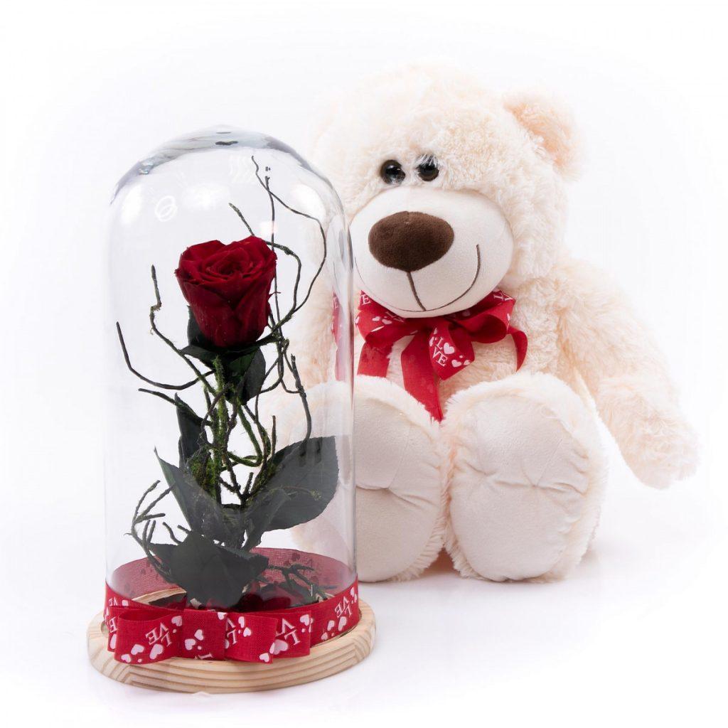 Trandafiri criogenați roșii, Trandafir criogenat romantic și ursuleț de pluș 40 cm, doar 399,99 RON