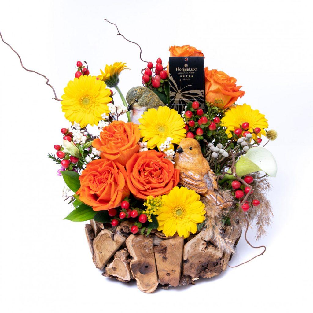 Mesaje de Florii, Colț însorit de natură, doar 350,10 RON